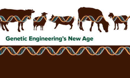 Genetic Engineering's New Age