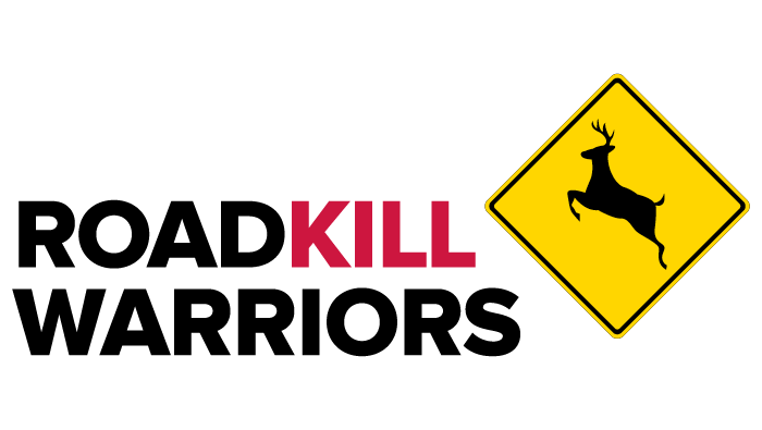 Illustration: Roadkill Warriors