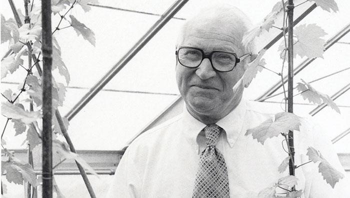 Harold Olmo