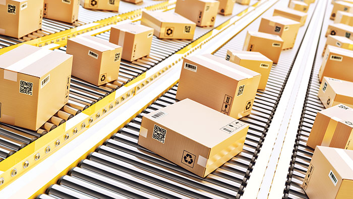 What Is the Environmental Cost of Fast Shipping?