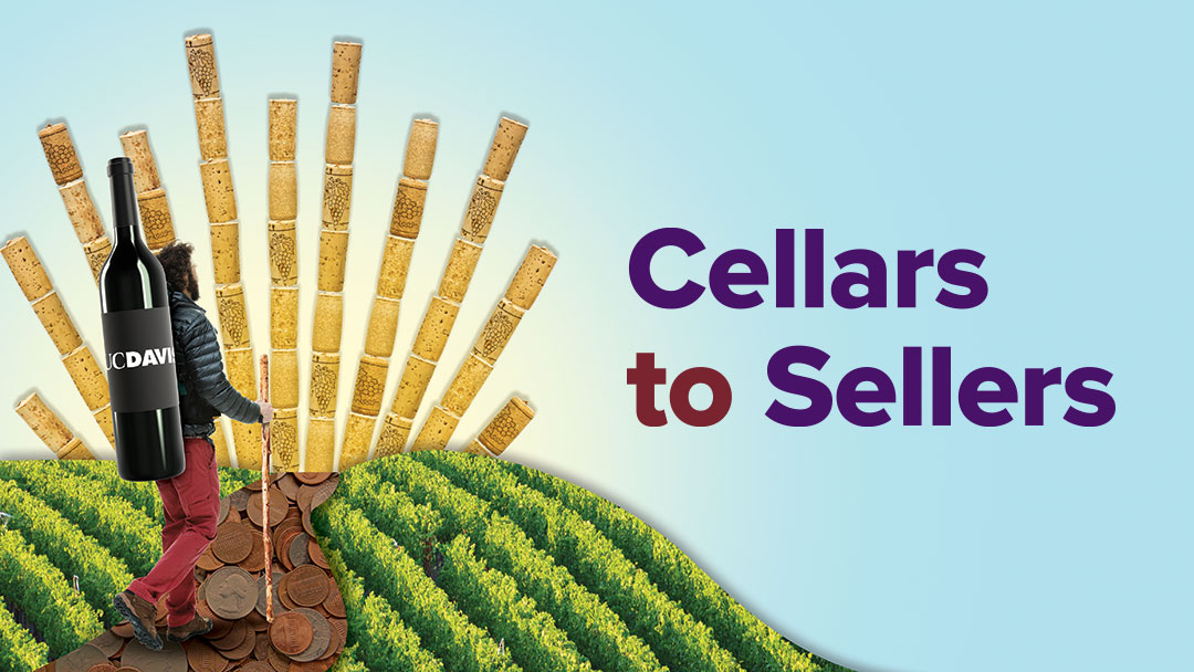 Graphic header that says: Cellars to Sellers