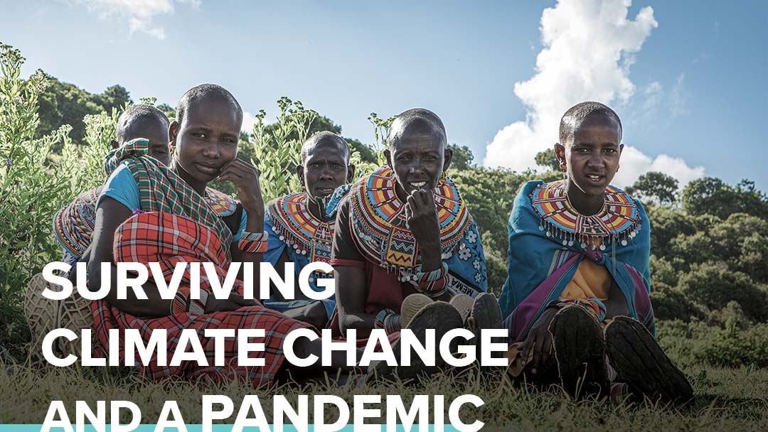 Graphic header: Surviving Climate Change and a Pandemic