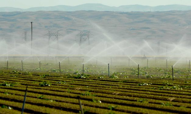 Who is to Blame for California's Drought?
