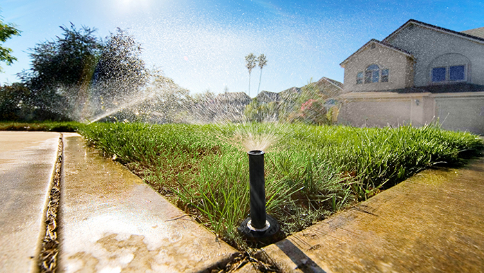 Sprinklers water a lawn in front of a house
