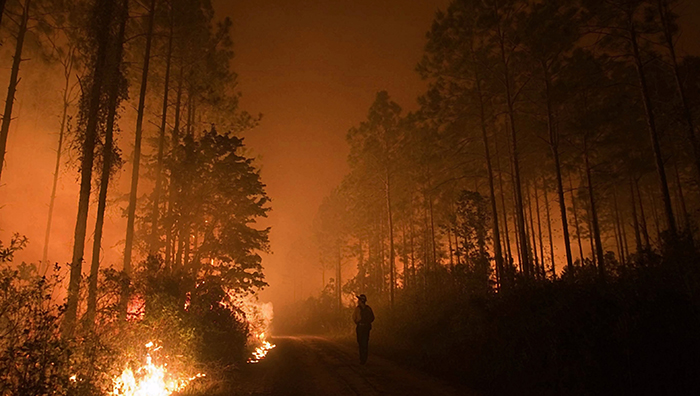 What Is the Health Impact of Wildfire Smoke?